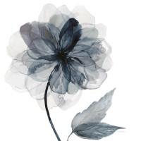 Carol Robinson - Indigo Bloom I