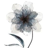 Carol Robinson - Indigo Bloom II