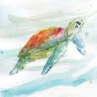 Carol Robinson - Turtle Tropics I