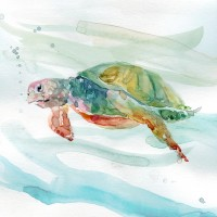 Carol Robinson - Turtle Tropics II