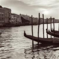 Alan Blaustein - Campo Di Salute, Venezia