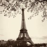 Alan Blaustein - Tour Eiffel