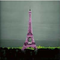 Anne Valverde - Paris - Pinky Eiffel Tower
