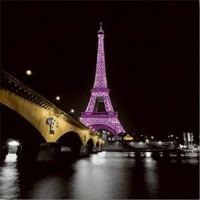Anne Valverde - Paris Eiffel Tower - Lady in Pink