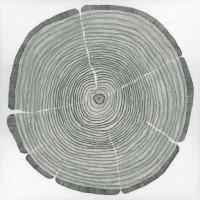 Sandrine Pellisier - Tree Lines