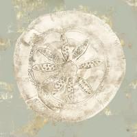 Aimee Wilson - Cone Shells I