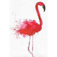 Aimee Wilson - Flamingo Portrait II