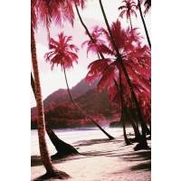 Beach - Red