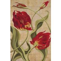Brian O'Neill - Tulip Tango II