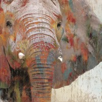 Nan - Paint Splash Elephant