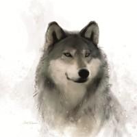 Carol Robinson - Rainsoft Wolf
