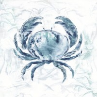 Nan - Blue Marble Coast Crab