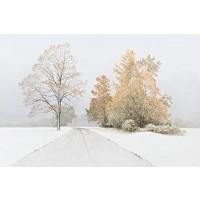 Autumn Snofall-Volkov