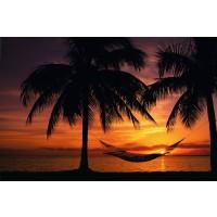 Hammack Sunset