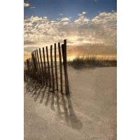 Celebrate Life Gallery - Dune Fence At Sunrise