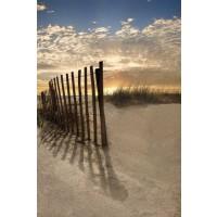 Celebrate Life Gallery - Dune Fence At Sunrise