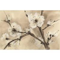 Chris Paschke - Spring Blossom III