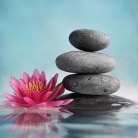 Zen Stones in a serenity pool
