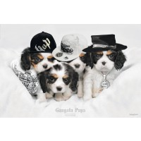 Keith Kimberlin - Gangsta Pups