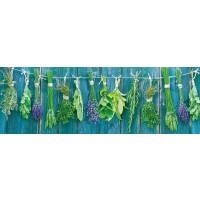 Herbs - Hanging