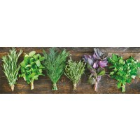 Herbs - Bouquet