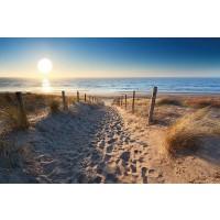Beach - Dune Path