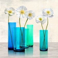 Ann Cynthia - Poppies in crystal vases (Aqua I)