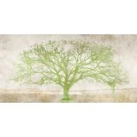 Alessio Aprile - Green Tree