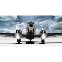 Gasoline Images - Airplane taking off in a blue sky