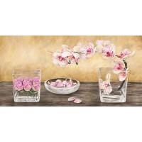 Dellal Remy - Orchids and Roses Arrangement