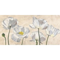 Villa Luca - Poppies in White