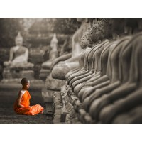 Pangea Images - Young Buddhist Monk praying, Thailand (BW)