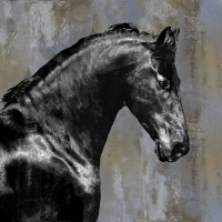 East Urban Home - Black Stallion