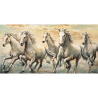 Ralph Steele - Wild Horses