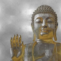 Tom Bray - Silver and Gold Buddha