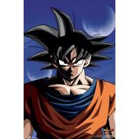 Dragonball Z - Goku