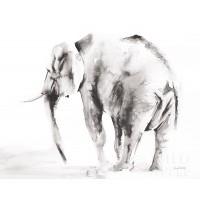 Aimee Del Valle - Lone Elephant Gray Crop
