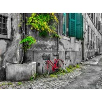 Assaf Frank - Bicycle outside old building, Rome, Italy