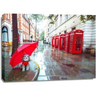 Assaf Frank - Dog with umbrella on London city street