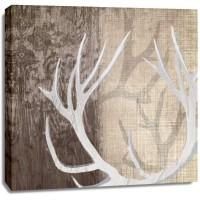 Tandis Venter - Deer Lodge I