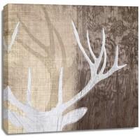 Tandis Venter - Deer Lodge II