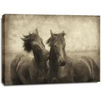 Lars Van de Goor - Horses Don't Whisper