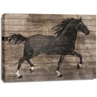 Conrad Knutsen - Barnwood Horse