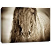 Lisa Dearing - Mustang Sally
