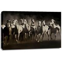 Lisa Dearing - Dream Horses