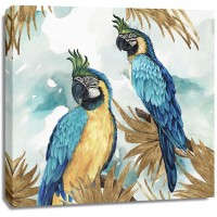Eva Watts  - Golden Parrots