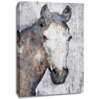 Irena Orlov - Horse Portrait II