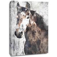 Irena Orlov - Horse Portrait I