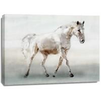 Edward Selkirk - White Horse