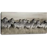 Frank Krahmer - Grants zebra, Masai Mara, Kenya